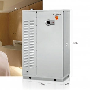 广东150kw容积式模块炉